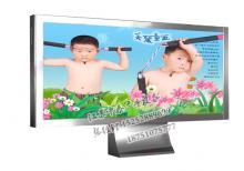 绿化带灯箱-绿化带广告灯箱ZT-L-30
